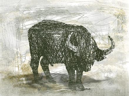 Water Buffalo Contemporary Art Print for Sale Online